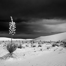 Storm - White Sands National Monument, New Mexico
